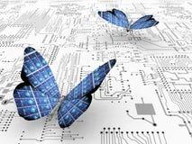 Mariposa y ecología Foto de archivo