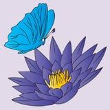 Mariposa y flor Fotos de archivo