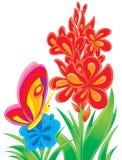 Mariposa y flor roja Imagen de archivo