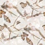 Mariposa y flores, modelo inconsútil de la pintura de la acuarela en el fondo blanco Fotografía de archivo libre de regalías
