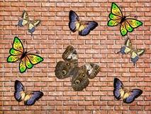 Mariposa y ladrillo Fotografía de archivo