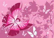Mariposa y plantas Imagen de archivo libre de regalías