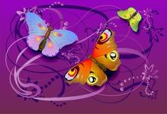 Mariposas Foto de archivo libre de regalías