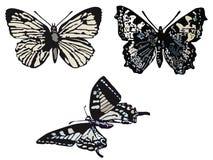 Mariposas. ilustración del vector