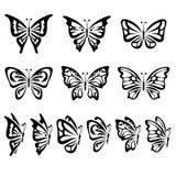 Mariposas Foto de archivo