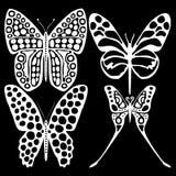 Mariposas blancas en un fondo negro Imagen de archivo libre de regalías