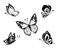 Mariposas blancos y negros del tatuaje, conjunto Imagen de archivo libre de regalías