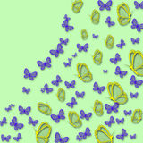 Mariposas brillantes hermosas Imagen de archivo libre de regalías