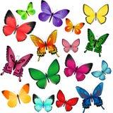 Mariposas coloreadas Fotografía de archivo
