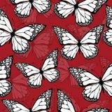 Mariposas coloreadas con el modelo inconsútil del ornamento, en boho del estilo, hippie, bohemio Brillante, poniendo en contraste Fotos de archivo libres de regalías