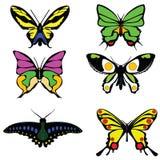 Mariposas coloreadas de los iconos en un blanco trama Fotos de archivo libres de regalías