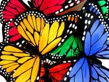 Mariposas coloridas Imagen de archivo libre de regalías