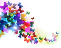 Mariposas coloridas del vuelo Imagen de archivo libre de regalías