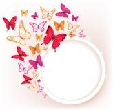 Mariposas coloridas realistas para la primavera ilustración del vector