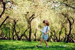 Mariposas de cogida de 3 años del muchacho feliz del niño con la red en el paseo en jardín o parque soleado Imagenes de archivo
