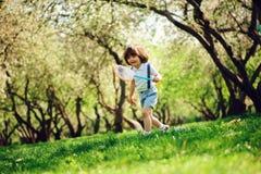 Mariposas de cogida de 3 años del muchacho feliz del niño con la red en el paseo en jardín o parque soleado Fotos de archivo libres de regalías