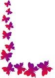 Mariposas de la esquina del marco Imágenes de archivo libres de regalías
