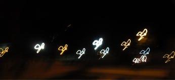 Mariposas de la noche Imágenes de archivo libres de regalías
