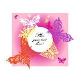 Mariposas del color con el fondo rosado Imagen de archivo libre de regalías