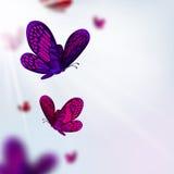 Mariposas del vuelo Fotografía de archivo libre de regalías