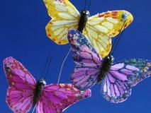 Mariposas en azul imagen de archivo libre de regalías