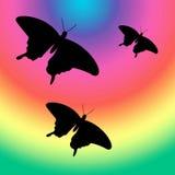 Mariposas en el arco iris Fotos de archivo