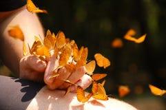 Mariposas en la mano Imagenes de archivo