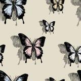 Mariposas en la pared Imágenes de archivo libres de regalías