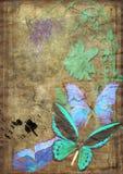 Mariposas en la vitela vieja foto de archivo