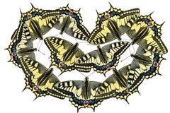 Mariposas en un fondo blanco - foto 2 Imagenes de archivo
