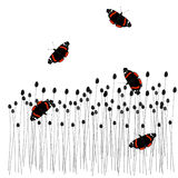 Mariposas encendido al prado Foto de archivo libre de regalías