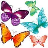 Mariposas fijadas Foto de archivo libre de regalías