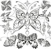 Mariposas fijadas Fotos de archivo