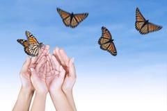 Mariposa hermosa y manos abiertas Imágenes de archivo libres de regalías