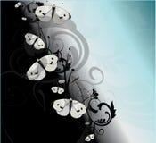 Mariposas negras y azules Fotografía de archivo