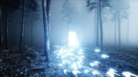 Mariposas que brillan intensamente en puerta del portal de la luz del bosque de la noche de la niebla Mistic y concepto mágico An almacen de metraje de vídeo