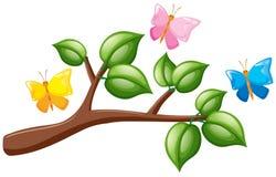 Mariposas que vuelan sobre la rama Imágenes de archivo libres de regalías