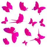 Mariposas rosadas hermosas, aisladas en un blanco stock de ilustración