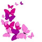 Mariposas rosadas hermosas, aisladas en un blanco ilustración del vector