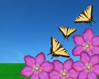 Mariposas y flores Imagen de archivo
