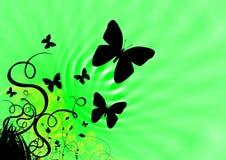 Mariposas y verde de la primavera imágenes de archivo libres de regalías