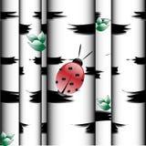 Mariquita libre illustration