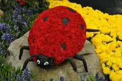 Mariquita hecha de las flores Imágenes de archivo libres de regalías