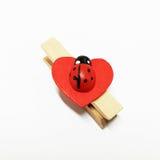 Mariquita roja en el clip de madera del corazón Foto de archivo