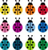Mariquitas coloreadas libre illustration