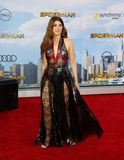 Marisa Tomei Royalty Free Stock Photography