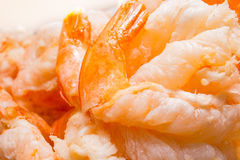 Marisco congelado do camarão imagem de stock royalty free