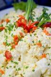Marisco da salada do calamar da culinária fotografia de stock
