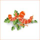 Marisco de um camarão ilustração stock