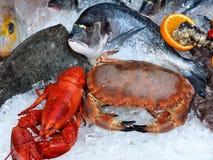 Marisco gourmet fresco com lagostas, caranguejos e peixes fotografia de stock royalty free